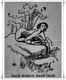 1895mordake07