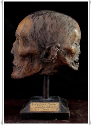 the_head_of_edward_mordrake_by_ejshindler-d9ejs5z